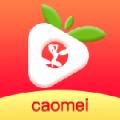 草莓成视频人app下载污免费